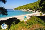 Kastani | Skopelos Sporades | Greece  Photo 10 - Photo GreeceGuide.co.uk