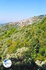 Glossa   Skopelos Sporades   Greece  Photo 3 - Photo GreeceGuide.co.uk