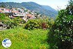 Glossa | Skopelos Sporades | Greece  Photo 17 - Photo GreeceGuide.co.uk
