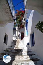 Glossa   Skopelos Sporades   Greece  Photo 20 - Photo GreeceGuide.co.uk