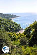 Beaches Kastani and Milia  Skopelos Sporades   Greece  Photo 4 - Photo GreeceGuide.co.uk