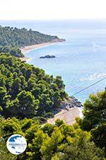 Beaches Kastani and Milia |Skopelos Sporades | Greece  Photo 5 - Photo GreeceGuide.co.uk