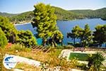Panormos Skopelos | Sporades | Greece  Photo 18 - Photo GreeceGuide.co.uk