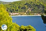 Panormos Skopelos | Sporades | Greece  Photo 21 - Photo GreeceGuide.co.uk