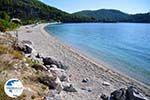Panormos Skopelos | Sporades | Greece  Photo 23 - Photo GreeceGuide.co.uk