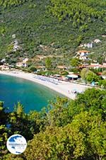 Panormos Skopelos | Sporades | Greece  Photo 25 - Photo GreeceGuide.co.uk