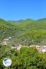 Panormos Skopelos | Sporades | Greece  Photo 28 - Photo GreeceGuide.co.uk