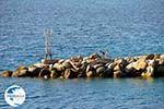 The harbour of Loutraki Skopelos | Sporades | Greece  Photo 1 - Photo GreeceGuide.co.uk