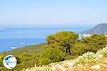 View to bay Pefkos | Agios Panteleimon | Skyros Photo 4 - Photo GreeceGuide.co.uk
