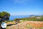 View to bay Pefkos | Agios Panteleimon | Skyros Photo 10 - Photo GreeceGuide.co.uk