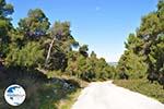 Near Agios Panteleimon Church | Skyros Greece Photo 11 - Photo GreeceGuide.co.uk