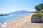 Near Molos and Magazia | Skyros Greece Photo 12 - Photo GreeceGuide.co.uk
