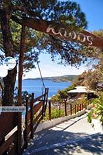 Linaria | Skyros Greece | Greece  Photo 5 - Photo GreeceGuide.co.uk