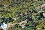 From Kalamitsa to Vouno | The zuiden of Skyros Photo 1 - Photo GreeceGuide.co.uk
