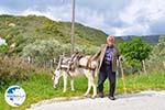 Man with Skyriaanse sandalen | Skyros Greece | Photo 2 - Photo GreeceGuide.co.uk