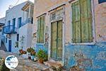 Ano Syros | Greece | Greece  Photo 26 - Photo GreeceGuide.co.uk