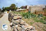 Sa Michalis   Northern Syros   Greece Photo 15 - Photo GreeceGuide.co.uk