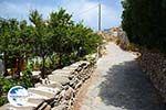 Sa Michalis   Northern Syros   Greece Photo 18 - Photo GreeceGuide.co.uk