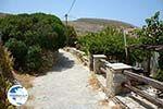Sa Michalis   Northern Syros   Greece Photo 27 - Photo GreeceGuide.co.uk
