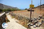 Kampos   Northern Syros   Greece   Photo 32 - Photo GreeceGuide.co.uk