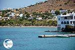 Posidonia | Syros | Greece nr 2 - Photo GreeceGuide.co.uk