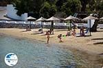 Posidonia | Syros | Greece nr 4 - Photo GreeceGuide.co.uk