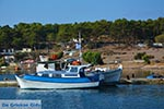 Island of Telendos - Dodecanese islands photo 47 - Photo GreeceGuide.co.uk