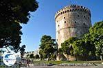 White Tower - Lefkos Pirgos | Thessaloniki Macedonia | Greece  Photo 9 - Photo GreeceGuide.co.uk