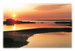 Delta Evros | Greece | Foto 5 - Photo Region of Eastern Macedonia and Thrace