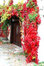 Maronia Rodopi | Greece | Foto 1 - Photo Region of Eastern Macedonia and Thrace