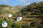 Agapi Tinos | Greece | Greece  Photo 13 - Photo GreeceGuide.co.uk