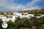 Agapi Tinos | Greece | Greece  Photo 21 - Photo GreeceGuide.co.uk