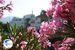 Agapi Tinos | Greece | Greece  Photo 28 - Photo GreeceGuide.co.uk