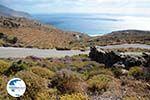near Agios Ioannis Porto   Tinos Greece Photo 14 - Photo GreeceGuide.co.uk