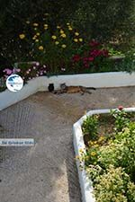Xinari near Exomvourgo Tinos | Greece | Photo 10 - Photo GreeceGuide.co.uk