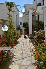 Falatados near Exomvourgo Tinos   Greece   Photo 21 - Photo GreeceGuide.co.uk