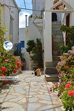 Falatados near Exomvourgo Tinos | Greece | Photo 23 - Photo GreeceGuide.co.uk