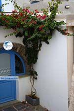 Komi Tinos | Greece | Photo 5 - Photo GreeceGuide.co.uk