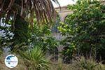Loutra Tinos | Greece | Photo 18 - Photo GreeceGuide.co.uk