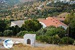 Loutra Tinos | Greece | Photo 41 - Photo GreeceGuide.co.uk