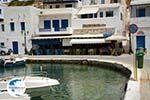 Panormos Tinos | Greece Photo 15 - Photo GreeceGuide.co.uk