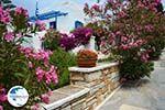 Pyrgos Tinos | Greece | Fotto 17 - Photo GreeceGuide.co.uk