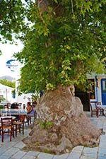 Pyrgos Tinos | Greece | Fotto 27 - Photo GreeceGuide.co.uk
