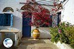 Village Tarampados near Kampos Tinos | Greece | Photo 3 - Photo GreeceGuide.co.uk