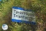 Triantaros near Dyo Choria Tinos | Greece | Photo 4 - Photo GreeceGuide.co.uk