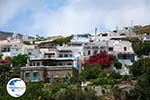 Triantaros near Dyo Choria Tinos | Greece | Photo 6 - Photo GreeceGuide.co.uk