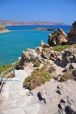 Vai Crete | Lassithi Crete | Greece  Photo 34 - Photo GreeceGuide.co.uk