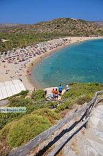 Vai Crete | Lassithi Crete | Greece  Photo 36 - Photo GreeceGuide.co.uk