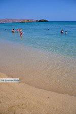 Vai Crete | Lassithi Crete | Greece  Photo 50 - Photo GreeceGuide.co.uk