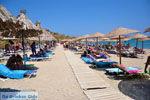 Vai Crete | Lassithi Crete | Greece  Photo 54 - Photo GreeceGuide.co.uk